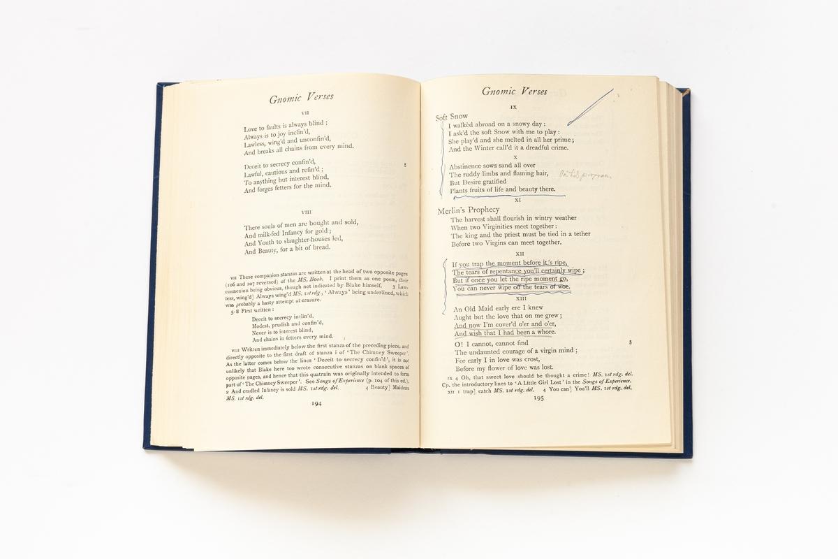 Blake's Poetical Works