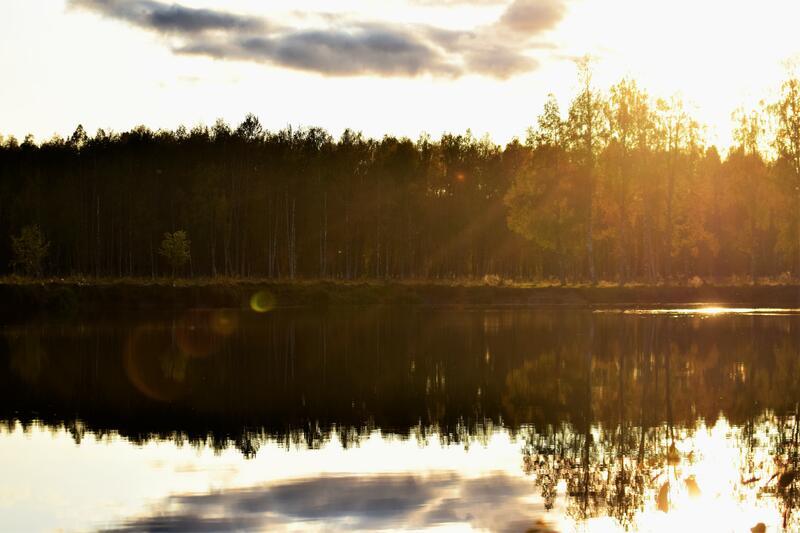 Foto av soloppgang i naturreservatet (Foto/Photo)