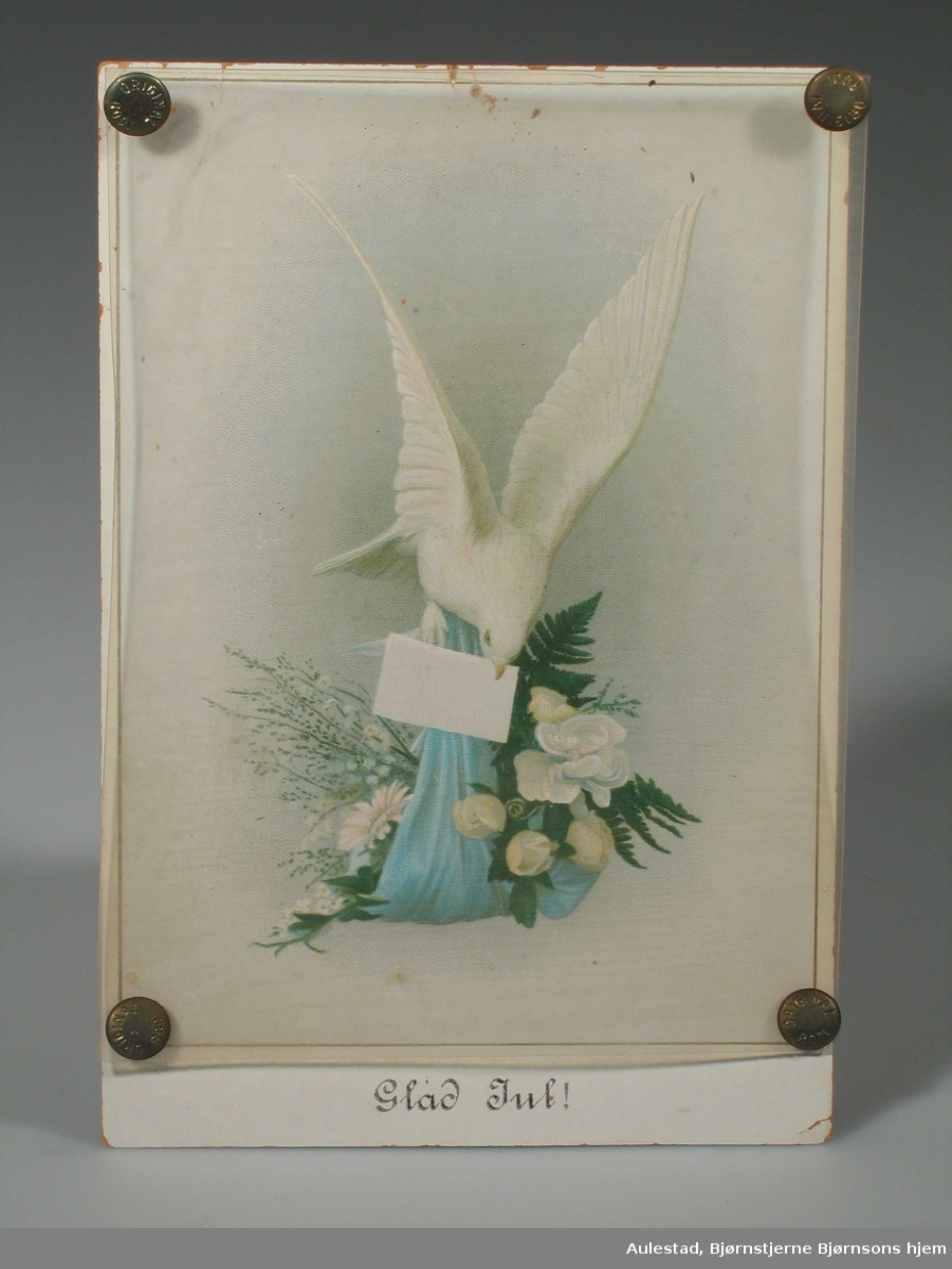 Hvit due med brev i nebbet. Holder et knyttet med blomster i klørne.
