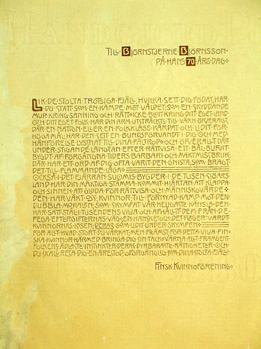 Innbundet adresse i brunt kalveskinn. Kalligrafert tekst; blindtrykk i bindets forside. Linjedekor og blomster i jugend-stil. Papiret har vannmerke.