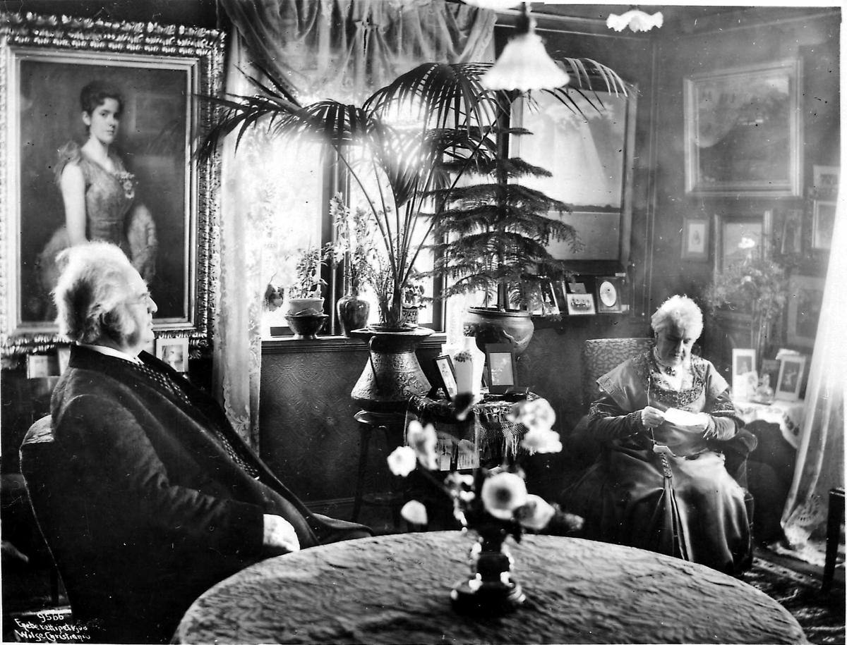 Aulestad, stue, Bjørnson, blomster, maleri,