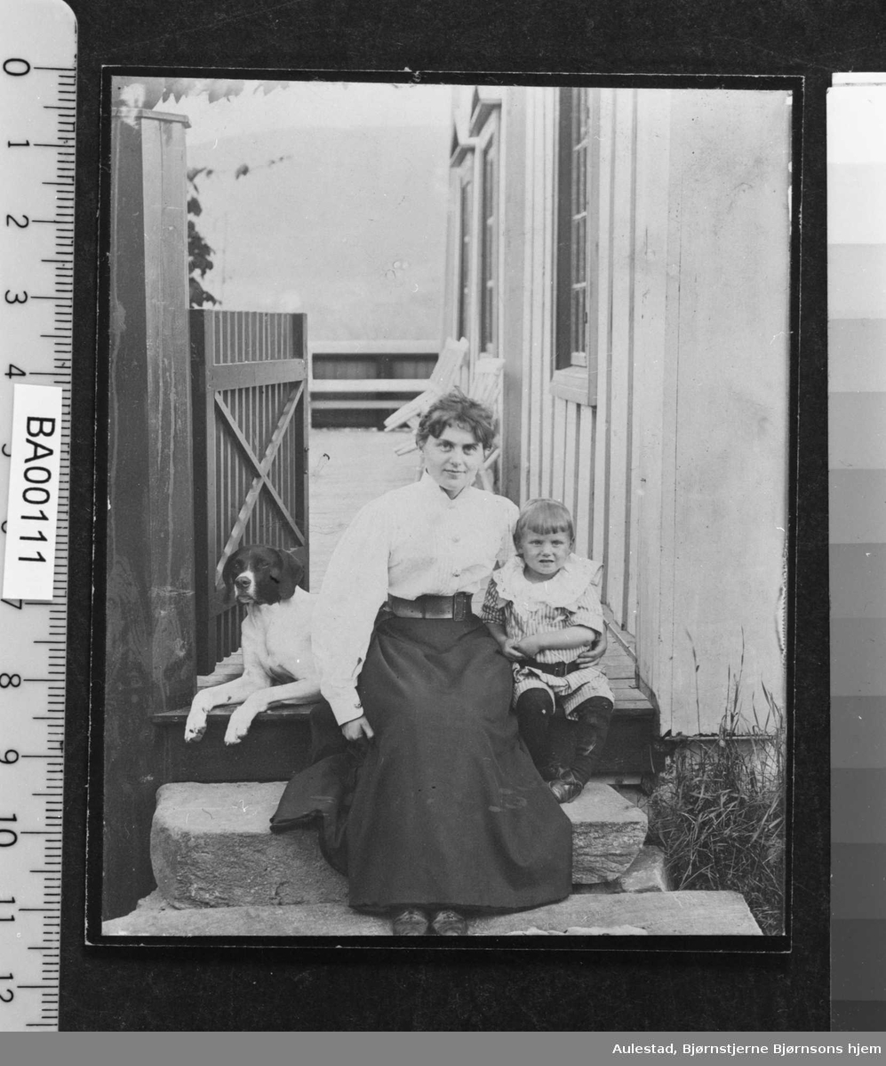 Bergliot Bjørnson Ibsen, sønn, hund, Aulestad, veranda,
