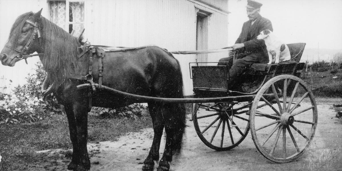 transport, hest, vogn to hjul, postbud, 1745 Skjeberg