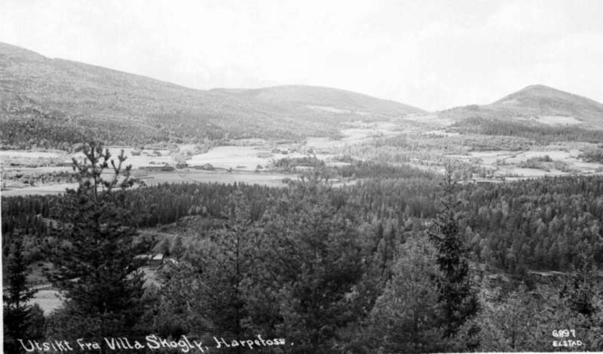 Sør-Fron. Utsyn fra Villa Skogly. Harpefoss.
