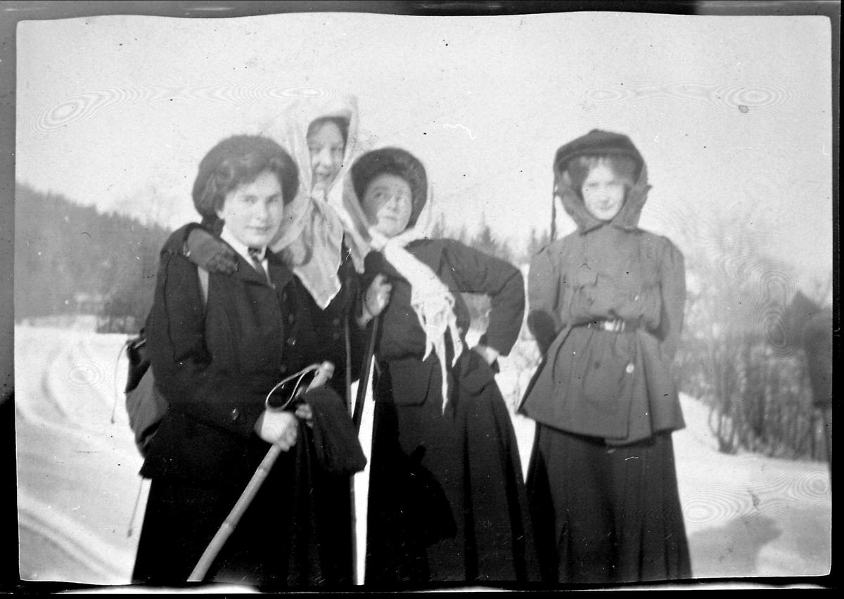Snø, ski, søster,
