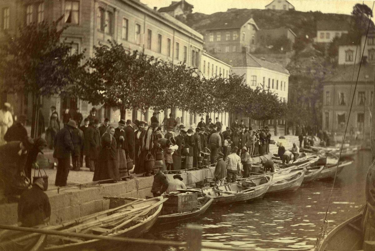 Stedsbilder Arendal Fiskebryggen - 1884