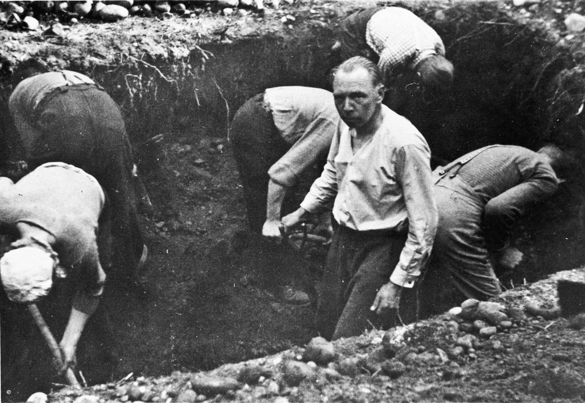 Trandumskogen. Det graves opp fanger som ble henrettet. NS-folkene måtte grave opp likene.