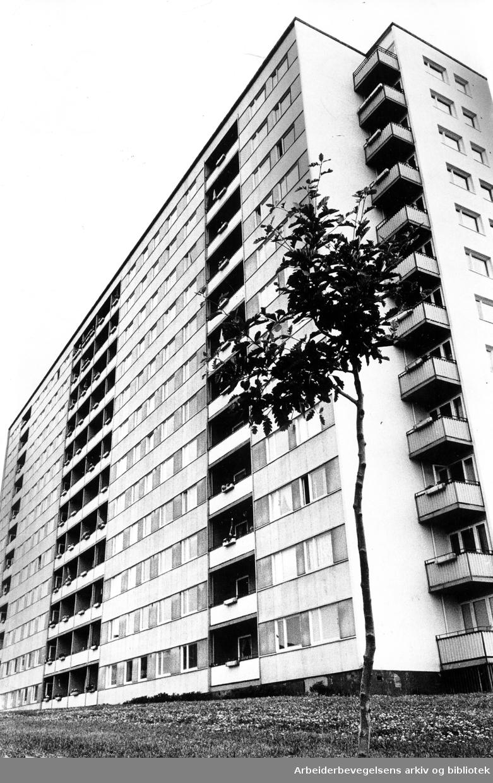 Blokk på Rødtvet,.juli 1967