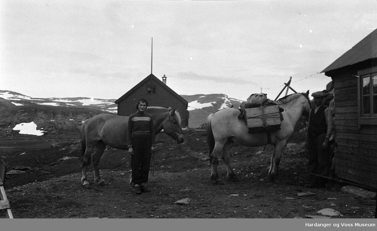 Portrett, Agnes S. Meland og Jarand H. Meland med kløvhest i Litlos