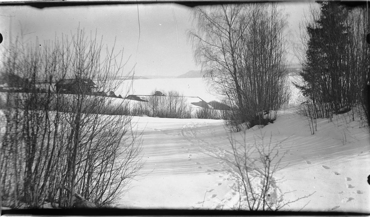 Vinterlandskap, Jessnes.