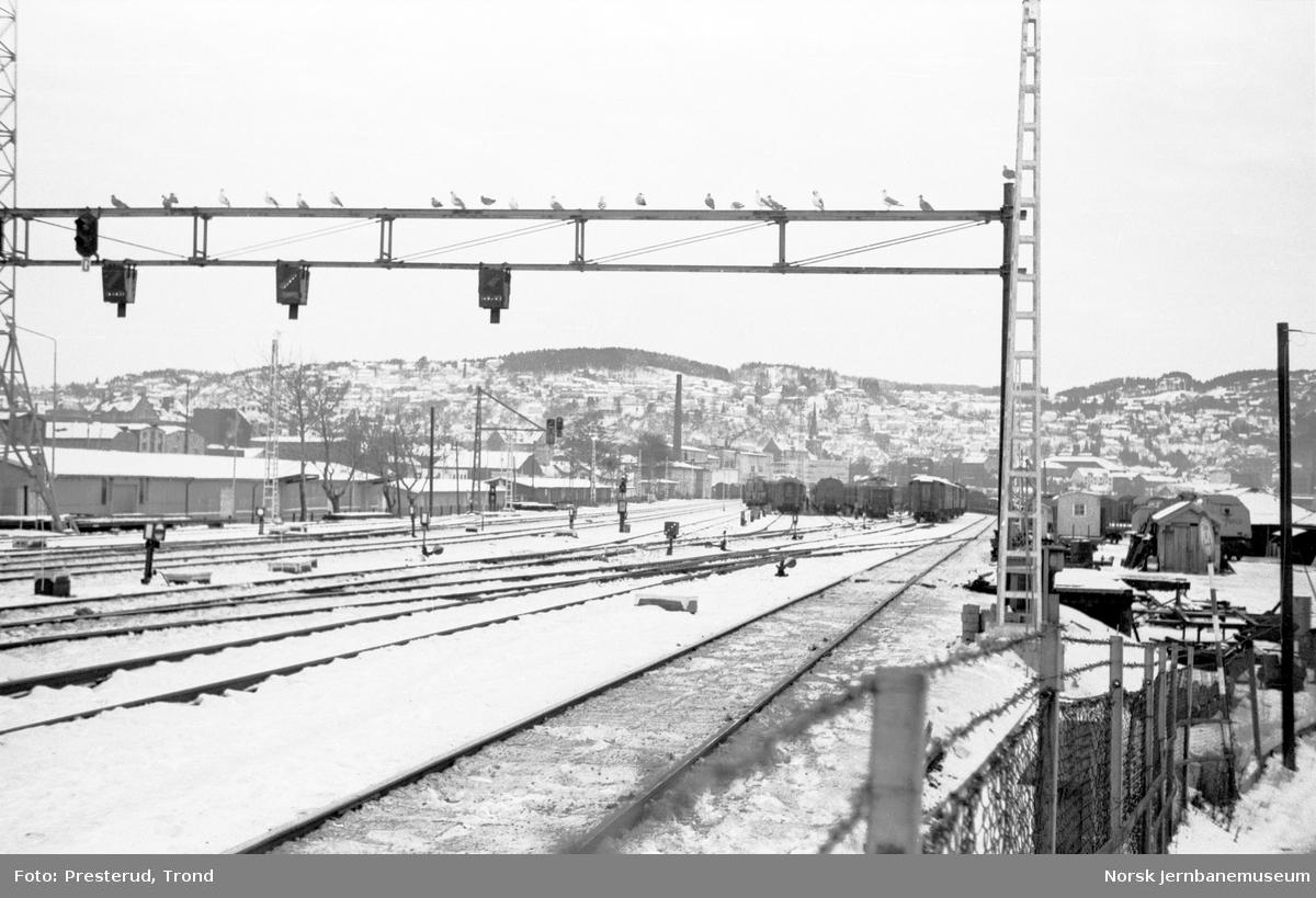 Driftsbanegården på Trondheim stasjon sett fra plattformene