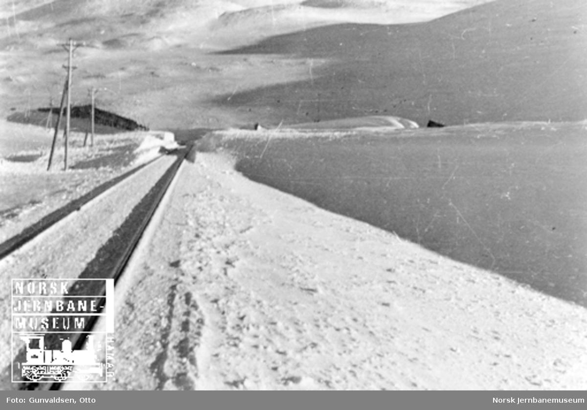 Linjeprofil etter snørydding ved Oksebotn