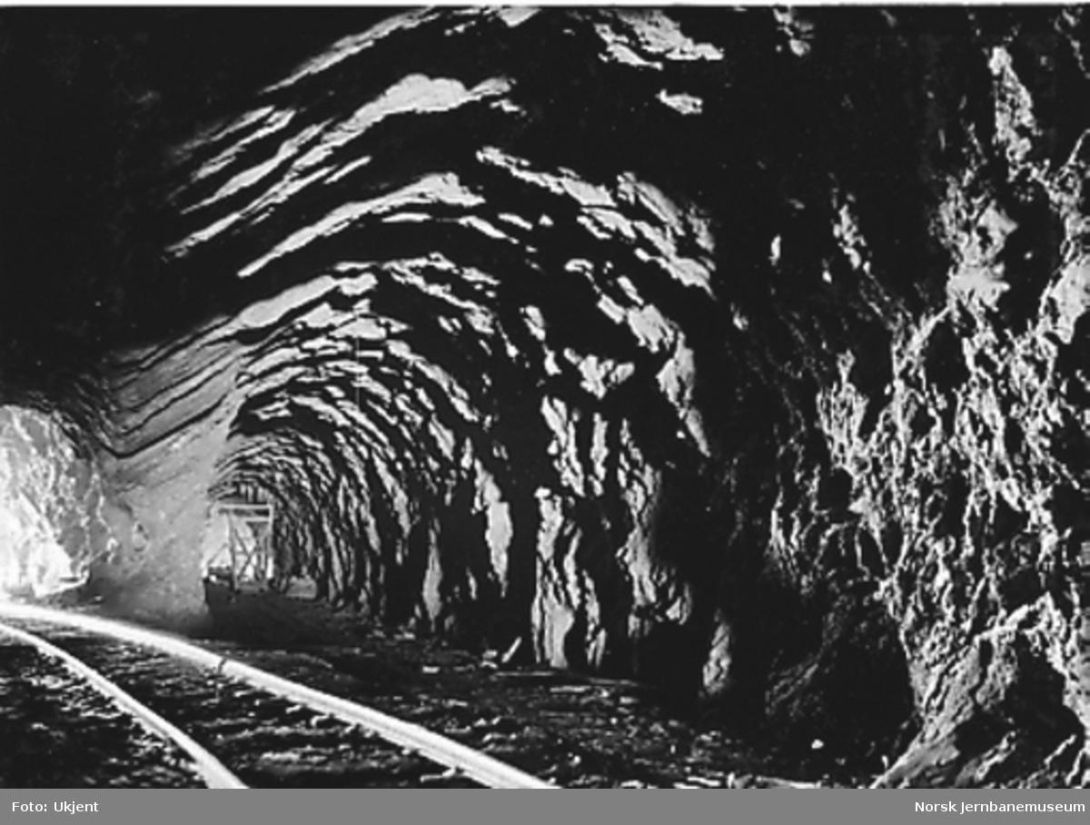 Tunnelanlegg ved Drøiliene