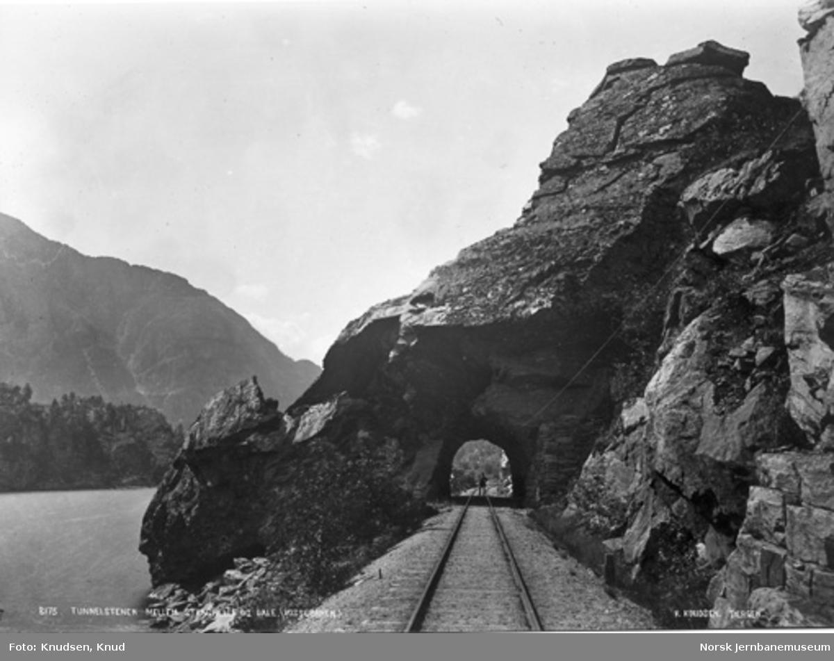 """""""Tunnelstenen"""" mellom Stanghelle og Dale"""