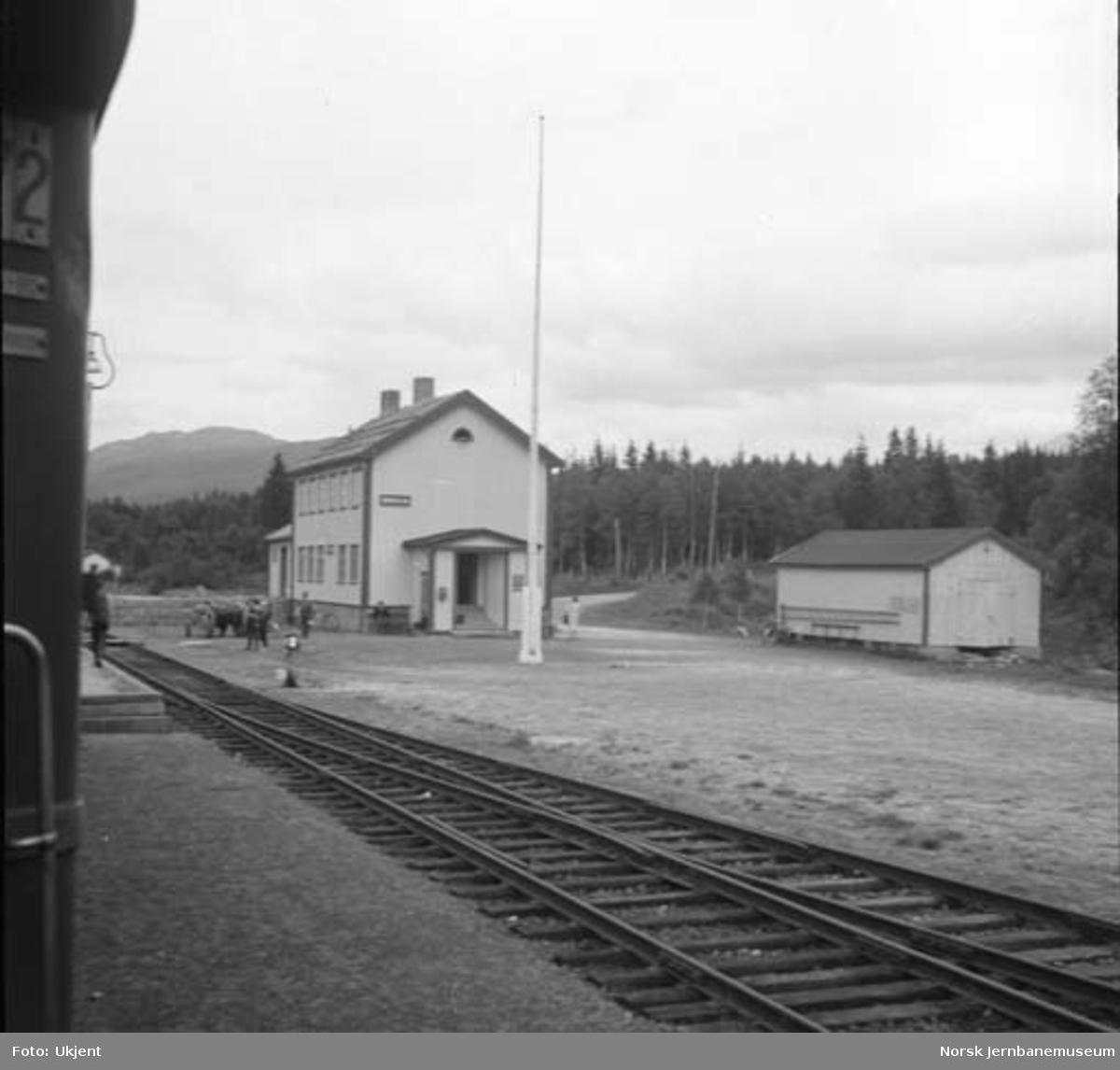 Drevja stasjon