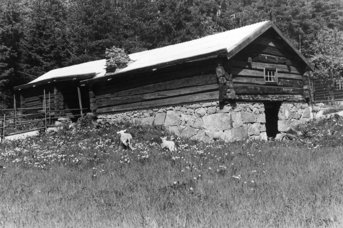 Fjøs og løe fra Engan i Os. I bakgrunnen: Barfrøstue fra Gammelstu Trønnes i Stor-Elvdal.