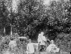 Familiemedlemmer på Holoa seter, Hadeland, Jevnaker, Oppland