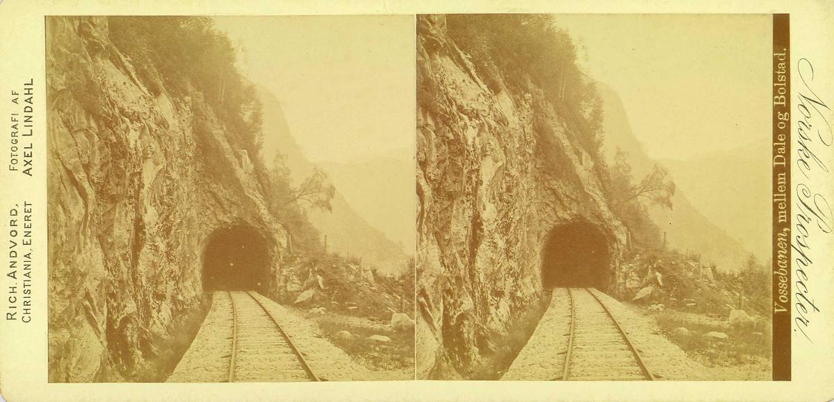 "Vossebanen. Parti mellom Dale og Bolstad, Voss, Hordaland. Jernbanelinje mot tunnel. Fra fotograf Axel Lindahls (1841-1906) serie stereofotografier, ""Norske Prospecter""."
