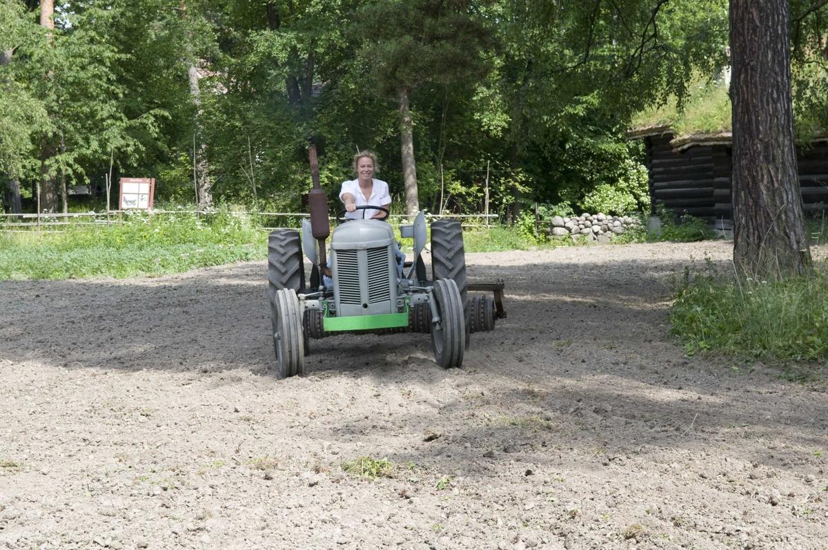 Landbruks medarbeider tromler jordet mellom setesdal og ampiansbråten.