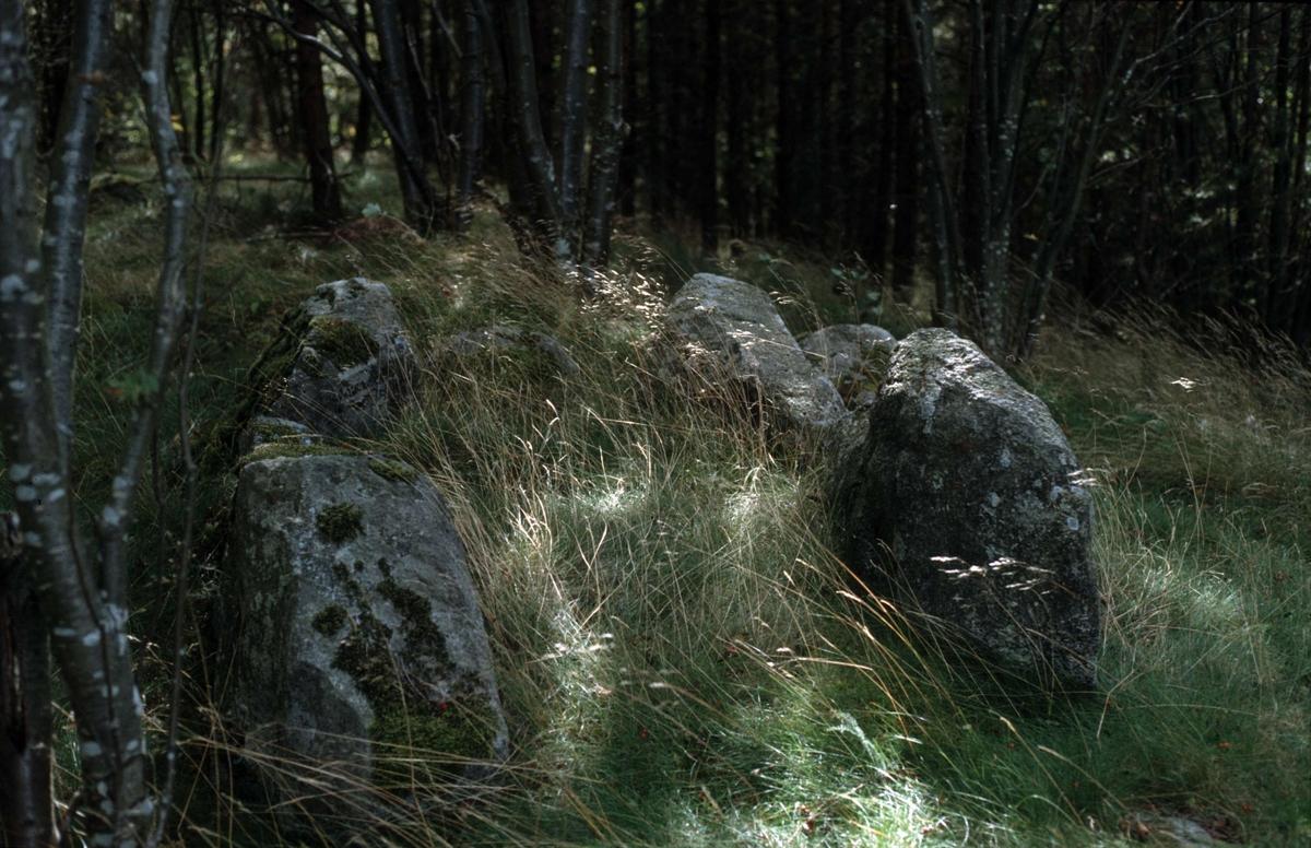 Hällkistan på åsen vid Varpsund, Häggeby socken i Uppland 1991