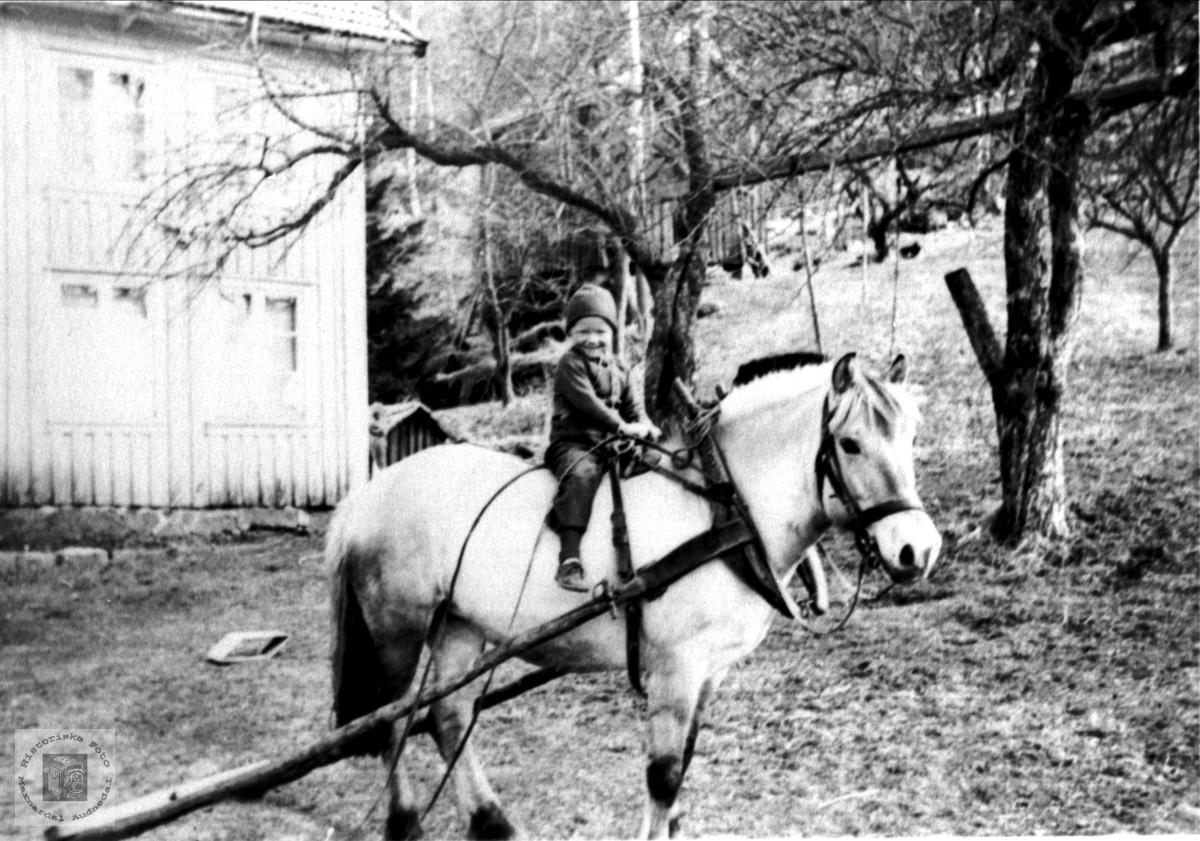 Ruth Homme på hesteryggen, Bjelland.