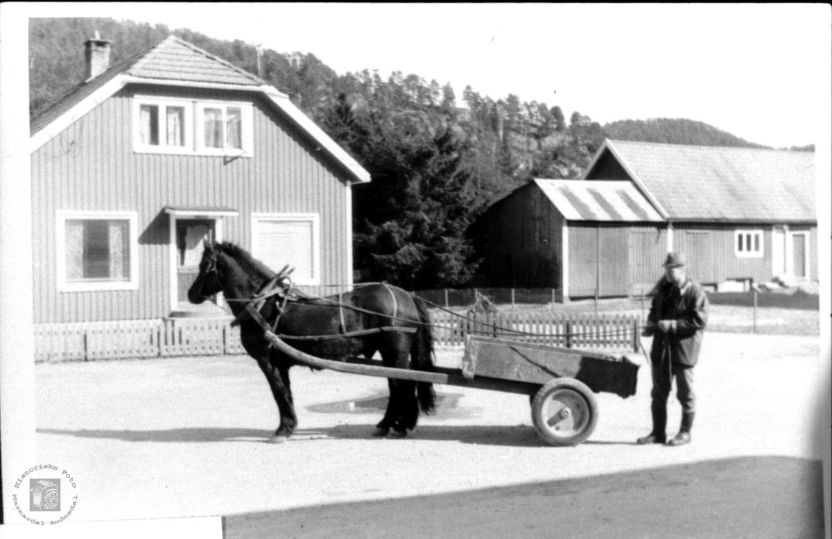 Daglegliv fra Bjelland Sentrum.