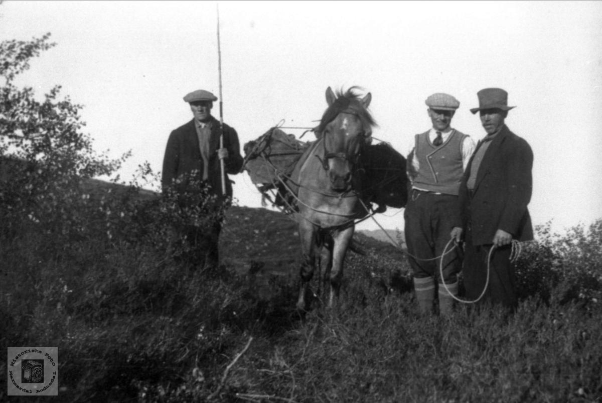 Samferdsel i gamal tid, med kløv til heis Bjerland, Bjelland.