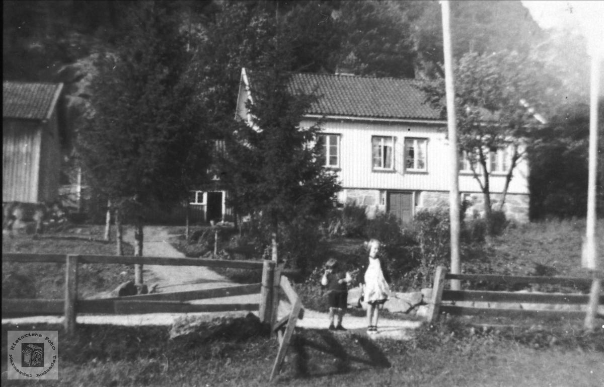 Skjævesland i Øyslebø.