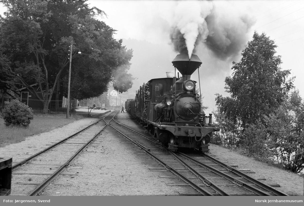 Damplokomotiv nr. 2 med godstog 5662 på Hægeland stasjon