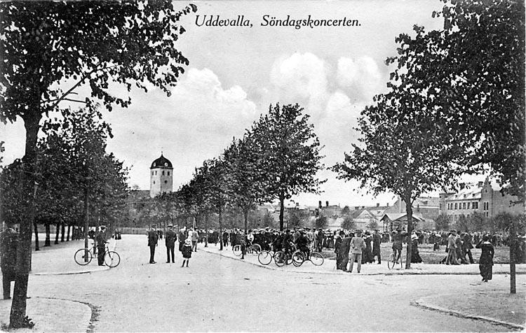 """Tryckt text på vykortets framsida: """"Uddevalla, Söndagskoncerten.""""  ::"""