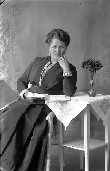 """Enligt fotografens journal Lyckorna 1909-1918: """"Berg, Fru Lyckorna""""."""