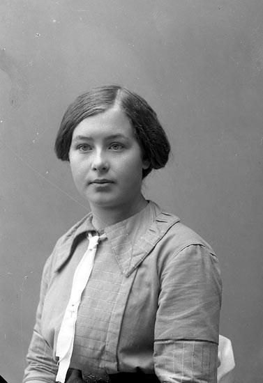 """Enligt fotografens journal nr 2 1909-1915: """"Jacobson, Celi, Hellesdalen, Svenshögen""""."""