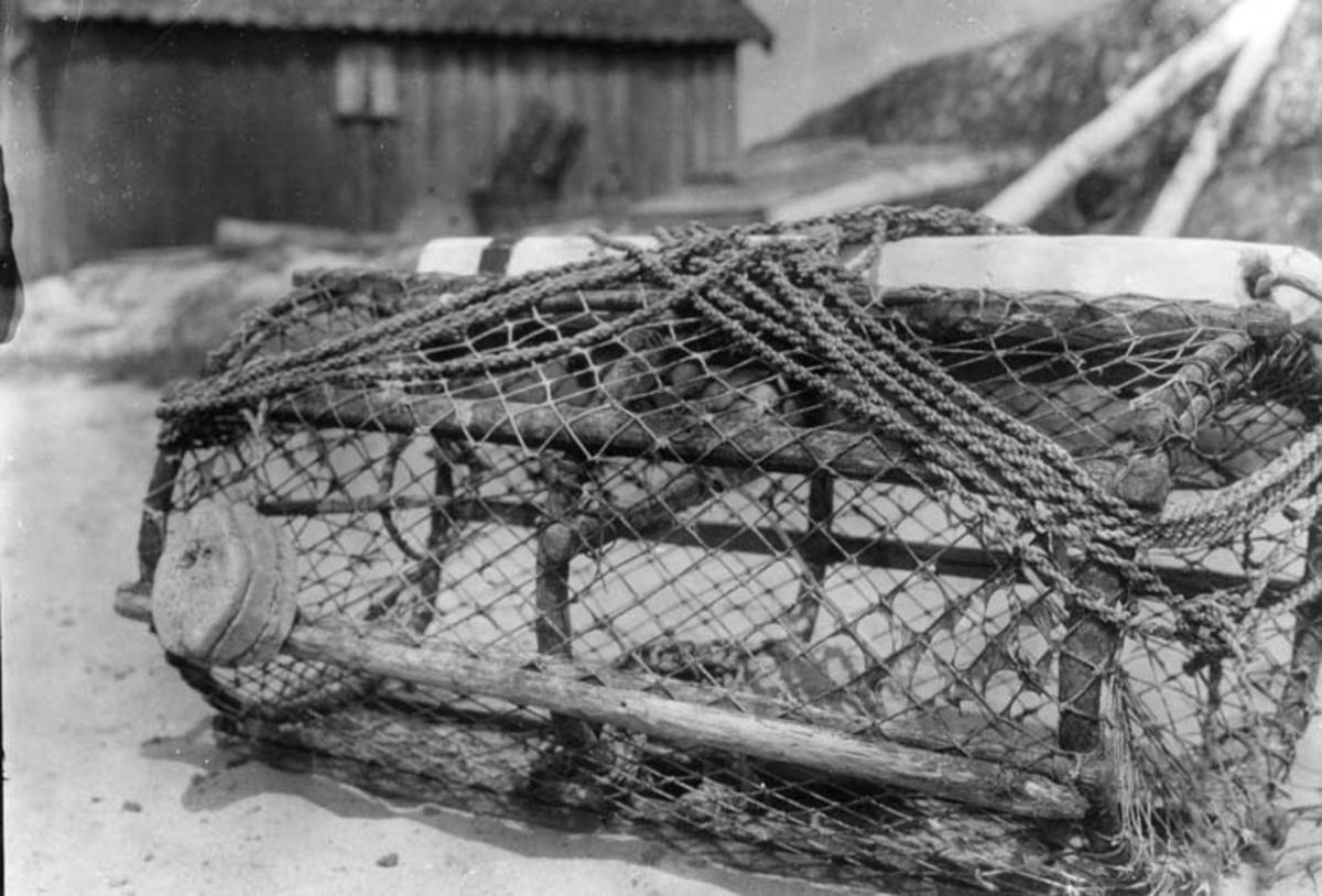 """Samtidigt förvärvat: UM26251-26257, 26984. Staffan Myrenberg  kommenterade bilden via DigitaltMuseum  26 jan 2013: """"På målet heter det tena. Målets tina är matask, -låda. Korken kallas tenedalt och till markeringen hör också """"väleträet"""" som ligger uppe på tenan. Varje fiskare hade sin egen märkning, oftast i vitt och rött men grönt och gult förekom också. Sönerna övertog oftast sin fars sätt att märka """"väleträet"""". """"Tenejolerna"""" är gjorda av eneträ som böjts till en ring. Tenebussen, nätet, bands under vinterkvällarna. Hela tenan stenkolstjärades för att hålla längre."""""""