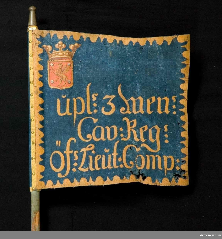 Duk: Enkel, tillverkad av blått kläde, något maläten. Duken fäst med en rad tennlickor mönstervävt band av silke.  Dekor: Målad lika på båda sidor utom Östergötlands vapen i övre, inre hörnet, liten guldkantad sköld, vari på rött fält upprätt, gul grip, vänd åt stången, följd av fyra vita rosor. Skölden krönes av en öppen krona i gult med rött kronfoder. Inskrift i gult på tre rader. Längs kanten bård i gult av omväxlande runda och spetsiga, inåtvända uddar.  Stång: Tillverkad av trä, grönblåmålad.