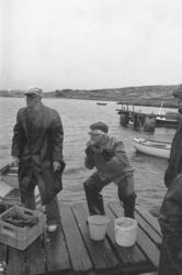 Hummerfiskare på Ramsvik