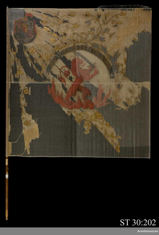 Duk av vit taft. Från hörnen går ursprungligen röda flammor i intarsia. Huvudmotivet är ett rött, okrönt, upprest lejon stående i eldsflammor hållandes en sabel. Lejonet är omgivet av en lagerkrans i guld. Över lejonet ett språkband där den ursprungliga texten blivit övermålad. Tidigare text: Pro deo rege et patria. I övre stånghörnet Kurlands vapen.
