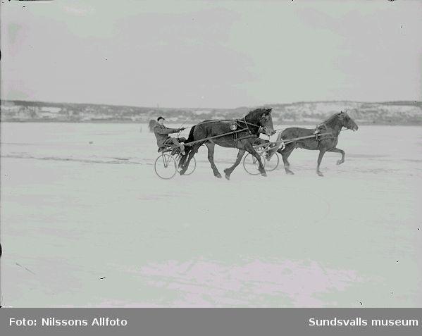 Travhästar och kuskar på isen.