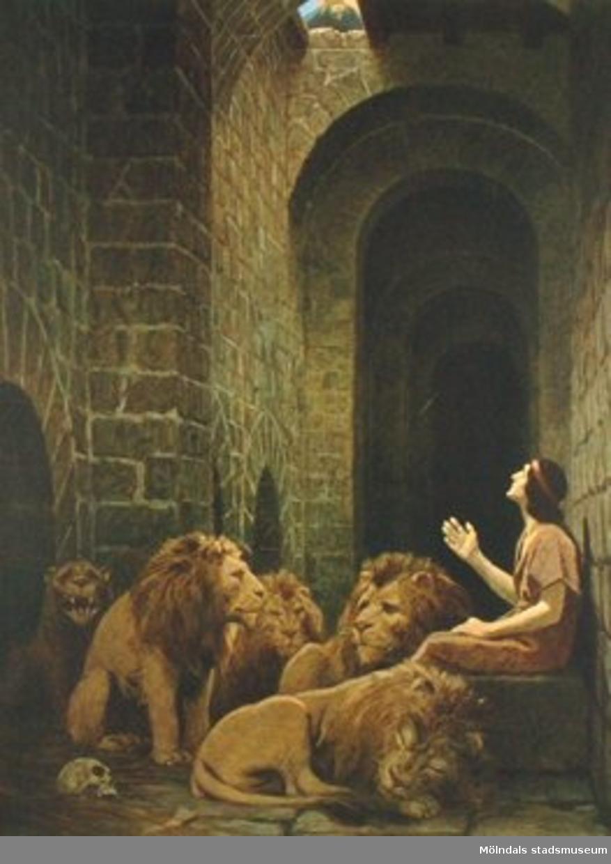 Kristendomskunskap:Daniel i lejongropen.Bibeln i bild nr. 10.