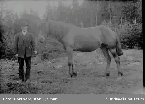 """""""T. A. Söderberg med häst"""