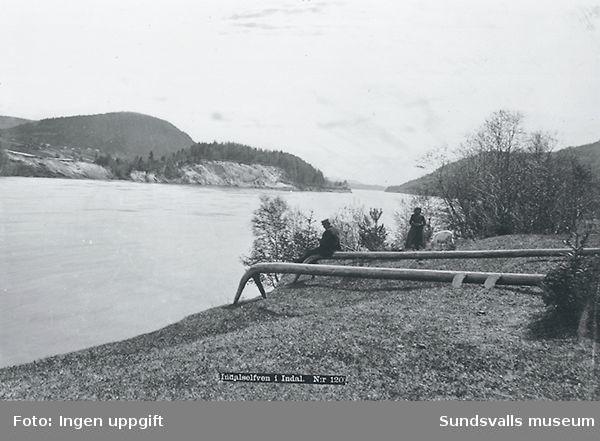 SuM-foto008752