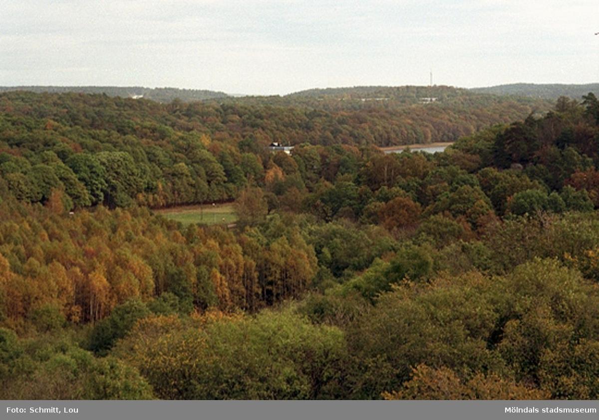 Utsikt vid Gunnebo slott.
