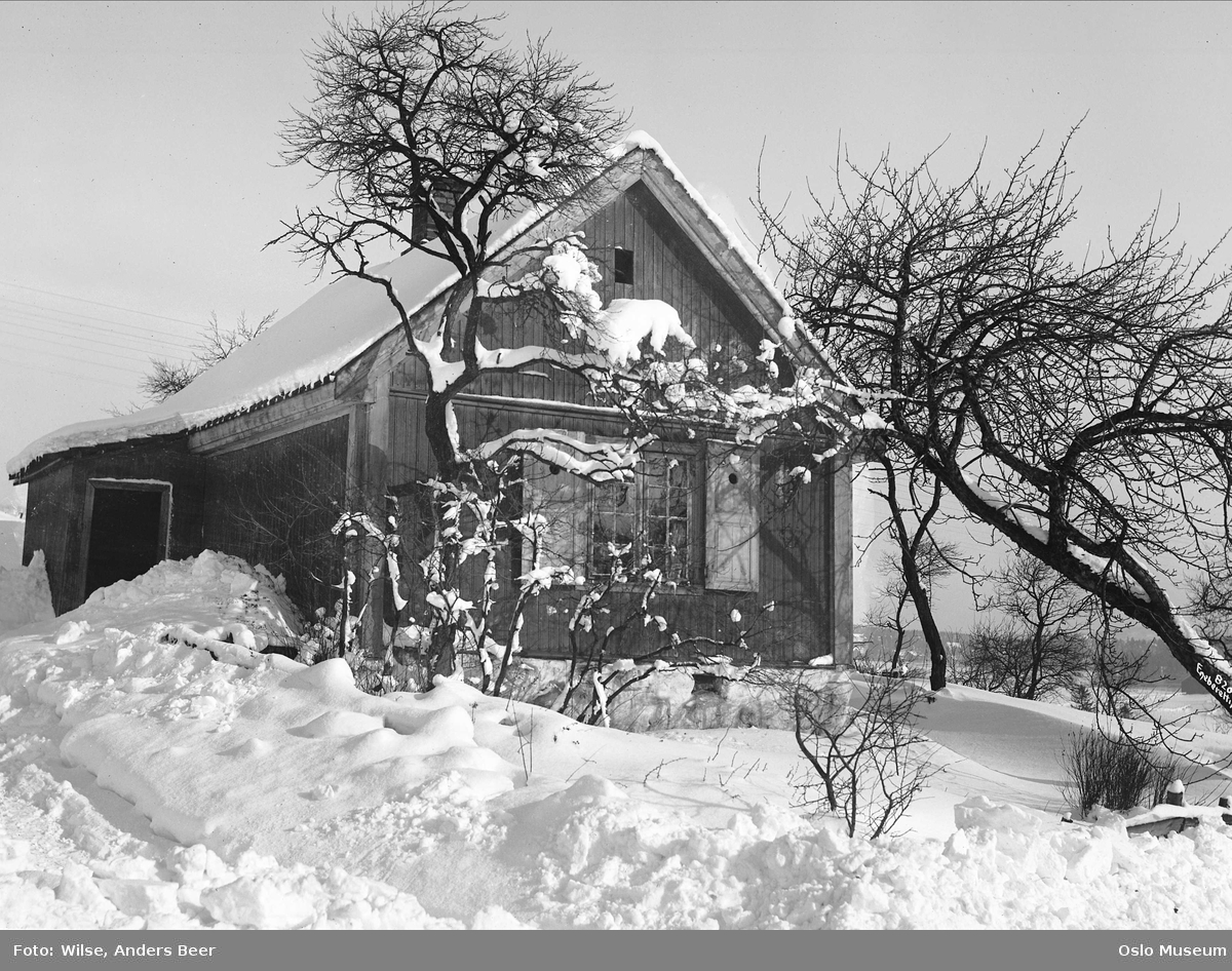 husmannsplass, bolighus, hage, snø