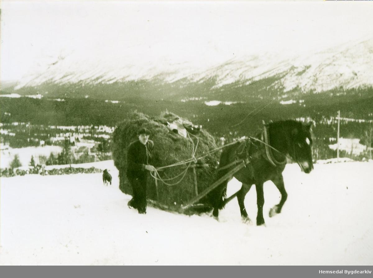 Olav Kven kjem til gards med eit fôrlass i 1944