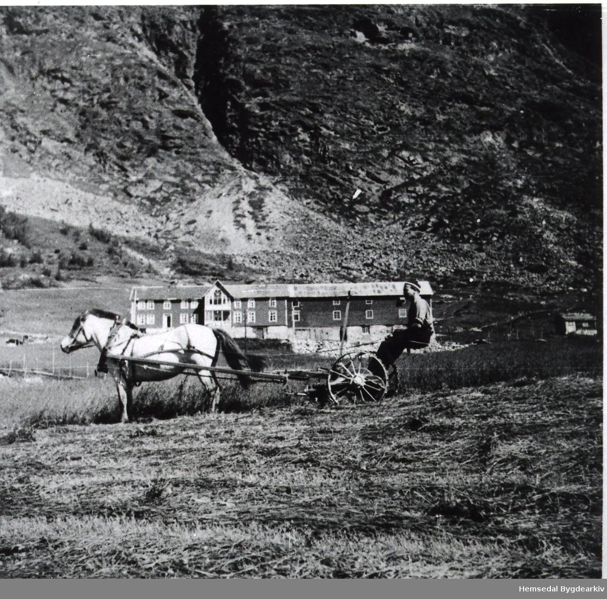 Olav J. Dokk med Borka på Bjøberg i Hemsedal, ca.1945. Slåmaskin. Gardsbygg. Skysstasjon.