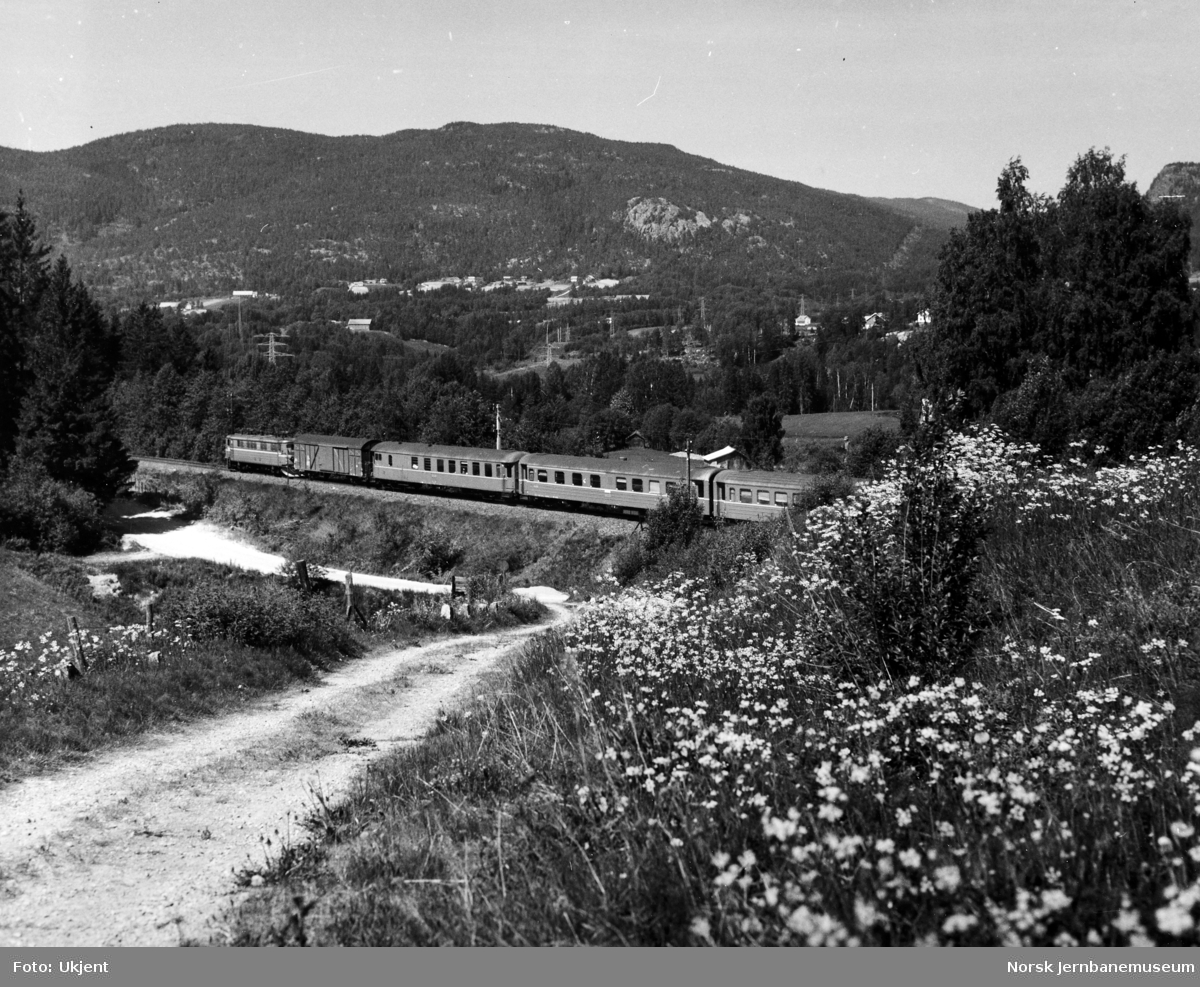 Elektrisk lokomotiv med persontog på Bergensbanen