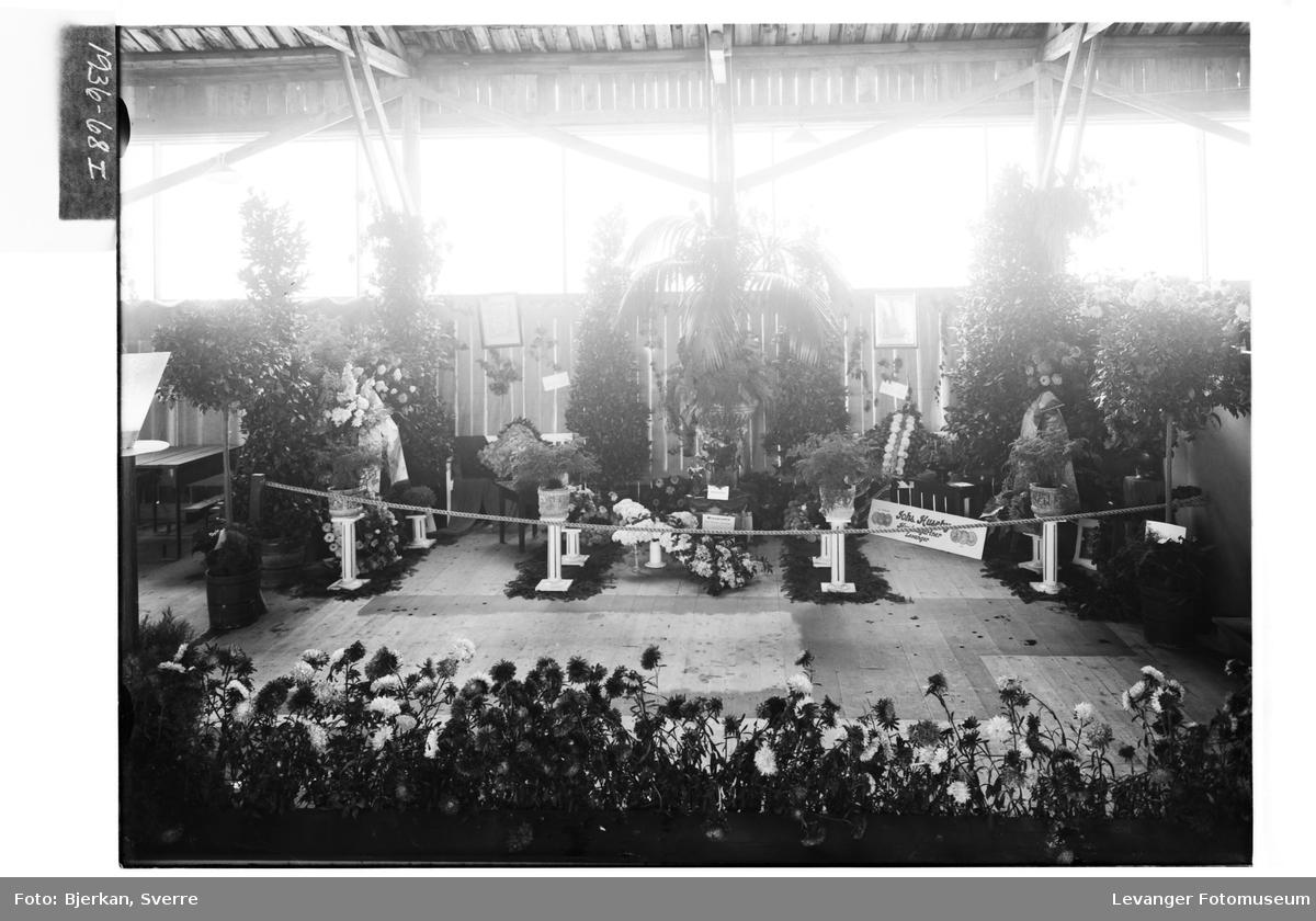 Fra Jubileumsutstillinga i Levanger, 1936 V