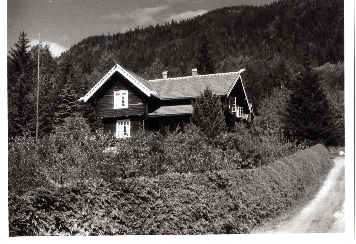 Vidkun Quisling sin villa i Fyresdal, Jonsborg i Hegglandsgrend