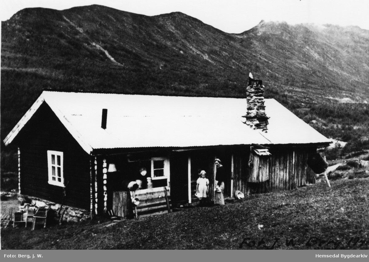Stølsbua til Søre Hjelmen i Hemsedal, Torsbu, i 1940.