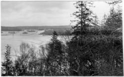 'Vy över snötäckt sjö med träd i förgrunden. På andra sidan