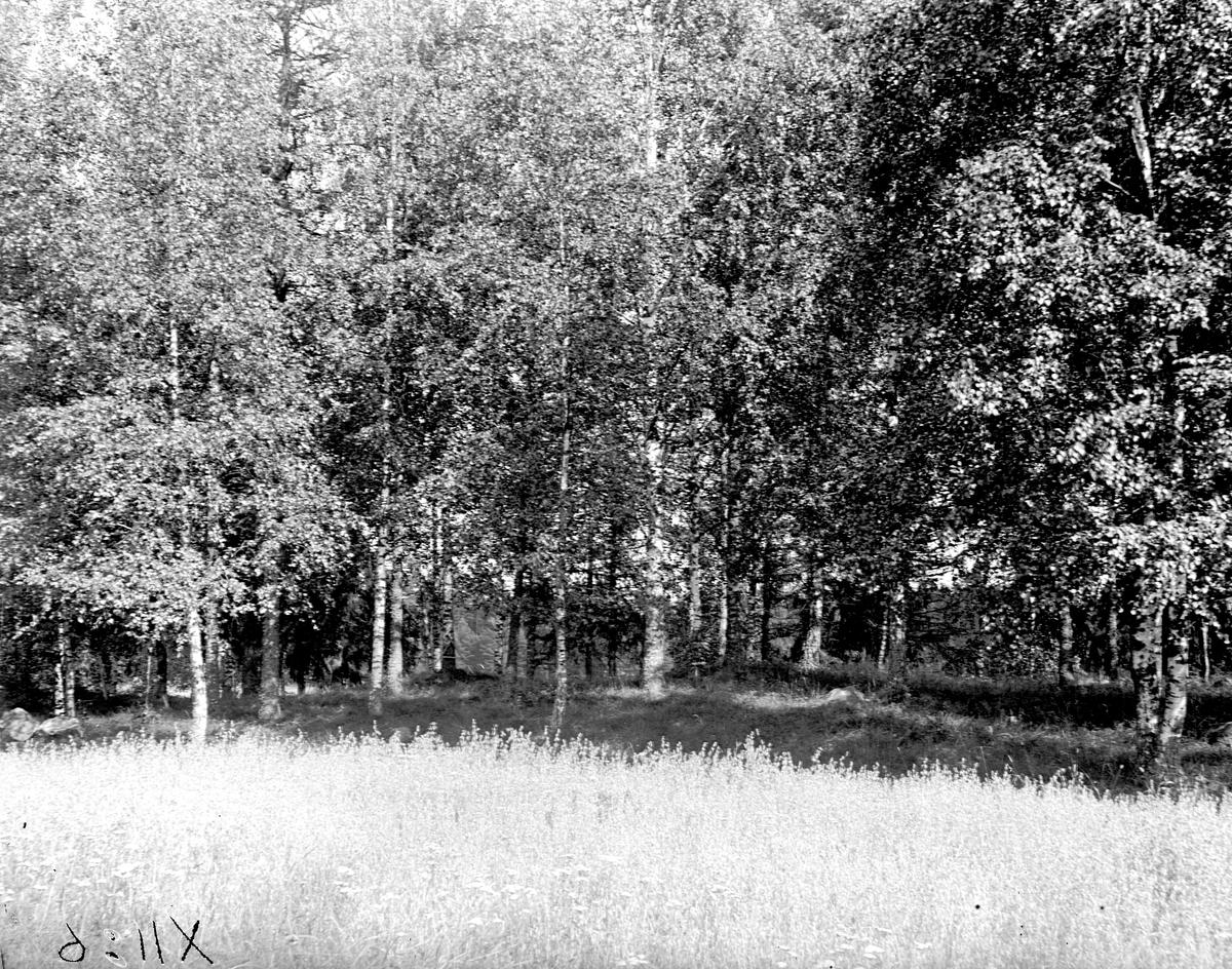 Gravfält vid Åker-by, Köping
